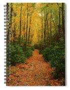 Fire Road Up Mount Minsi Spiral Notebook