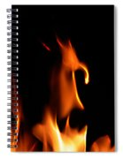 Fire Toon Spiral Notebook