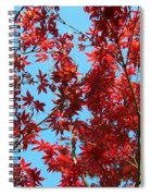 Fire Tree II Spiral Notebook