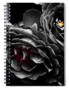 Fire Within Spiral Notebook