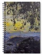 Fireflies Nocturne Spiral Notebook