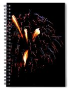 Fireworks 10 Spiral Notebook