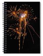 Fireworks 2 Spiral Notebook
