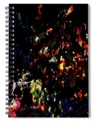 Fireworks 5 Spiral Notebook