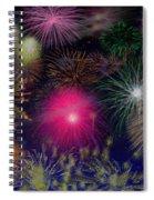 Fireworks Spiral Notebook