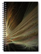 Fireworks Display Spiral Notebook