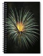 Fireworks Green Flower  Spiral Notebook