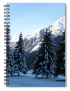 Firs In The Snow Spiral Notebook