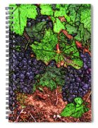 First Came The Grape Spiral Notebook