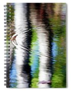 First Drop Water Reflection Spiral Notebook
