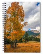First Fall Colors In Rocky Mountain National Park Spiral Notebook