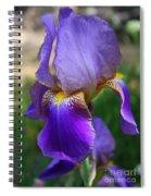 First Iris Spiral Notebook