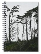 First Line Trees Along The Pacific Ocean Spiral Notebook