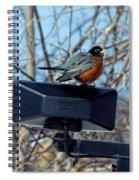 First Robin Spiral Notebook