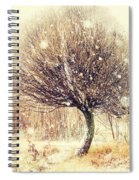 First Snow. Snow Flakes Spiral Notebook