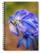 First Spring Flowers Spiral Notebook