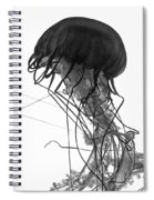 Fish 26 Spiral Notebook