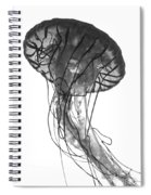 Fish 27 Spiral Notebook