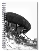 Fish 30 Spiral Notebook