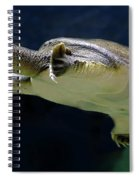 Fish 36 Spiral Notebook