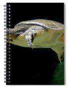 Fish 37 Spiral Notebook