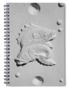 Fish And Bubbles Spiral Notebook