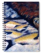 Fish And Shellfish Spiral Notebook