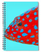 Fish Art - Strawberry Grouper Spiral Notebook