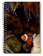 Fish In Sea Anemones Aquarium Spiral Notebook