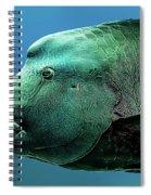 Fish Lips Spiral Notebook