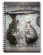 Fish Market Spiral Notebook