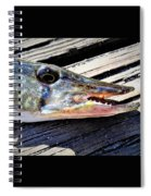 Fish Mouth Spiral Notebook