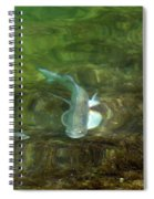 Fish Refractions Spiral Notebook