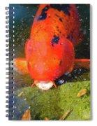 Fish Surprise Spiral Notebook
