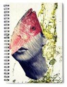 Fishhead Spiral Notebook