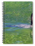 Fishing In The Springs Spiral Notebook