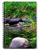 Fishing Pond Spiral Notebook