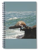 Fishing Sea Lion Spiral Notebook