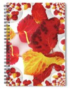 Five Autumn Leaves Spiral Notebook