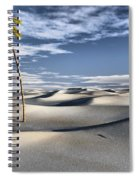 Five Cent Oasis Spiral Notebook