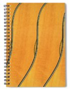 Five Fender Guitars Spiral Notebook