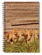 Five Fox Kits By Old Saskatchewan Granary Spiral Notebook