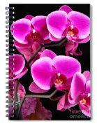 Five Orchids  Spiral Notebook