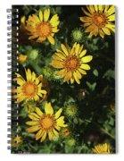 Five Yellow Flowers  Spiral Notebook