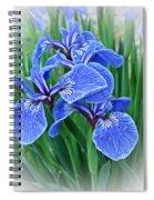 Flag Iris Blues Spiral Notebook