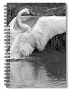Flair Spiral Notebook