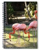 Flamago Twins  Spiral Notebook