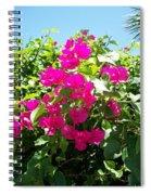 Flamante Spiral Notebook