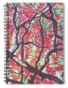 Flamboyant Beauty Spiral Notebook