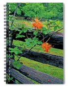 Flame Azalea And Fence Spiral Notebook